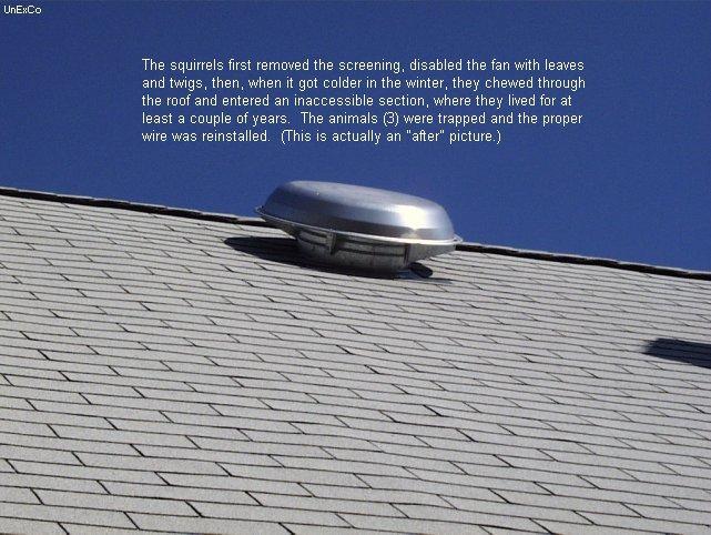 Rooftop Ventilation Fans ...